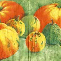 5x napkin Pumpkin green