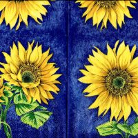 Sunflowers blue