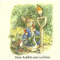 Rare  Beatrix Potter  Peter Rabbit eats Radishes