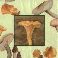 Rare Mushrooms green
